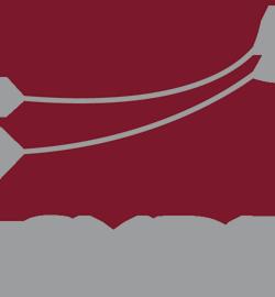 SVDI_logo